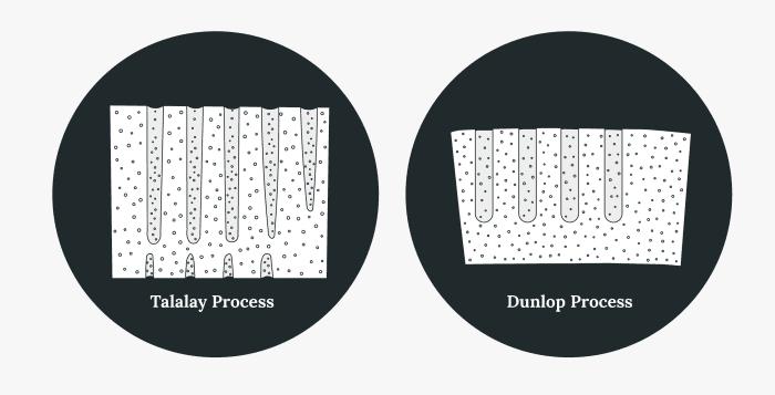 Talalay vs. dunlop latex organic mattress