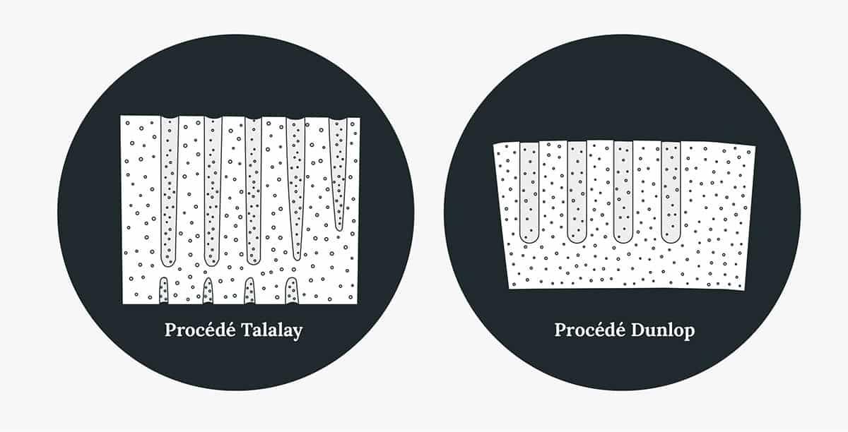 Icônes de procédé talalay vs. procédé dunlop